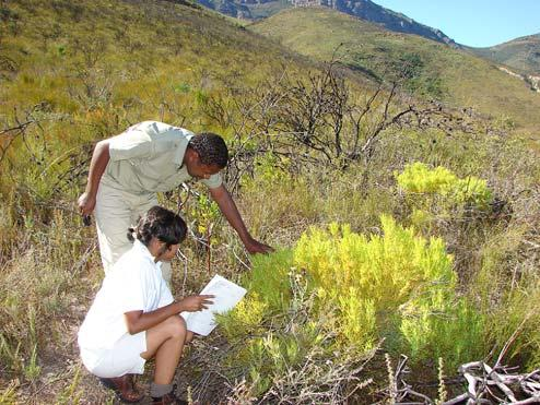 STEWARDSHIP OPERATIONAL PROCEDURES MANUAL 3.2.1 Biodiversity Site Assessment The main objectives of the site assessment are to: 1.