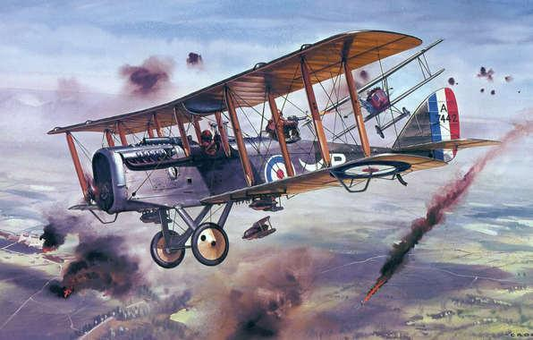 Claremen in the Royal Flying Corps The average life of a pilot in 1917 was 11 days. 14,000 pilots died in WW1. 8,000 in training. They had no parachutes. 4,000 Irishmen joined the RFC.