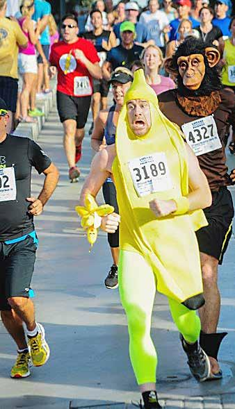 The Beach Reporter October 9, 2014 7 Celebrating 37 Years of the M.B. 10K It looks as if the monkey brought his own mid-race snack.