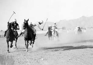 During the 1920s and 30s the sport that first brought the University of Arizona national recognition was polo.
