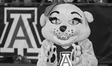 Wilma Wildcat was created when costume designers were attempting to make another costume for Wilbur and instead created Wilma.
