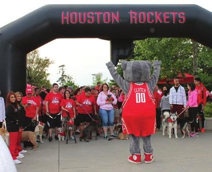 Dogs ranging from Chihuahuas to Great Danes sported red bandanas handed out by the Rockets. Dogs and owners enjoy a fun trek in the Park.