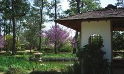 In addition, the City of Houston has committed over $800,000 to infrastructure projects. In the early 1990s, the non-profit Japanese Garden, Inc., raised approximately $1.