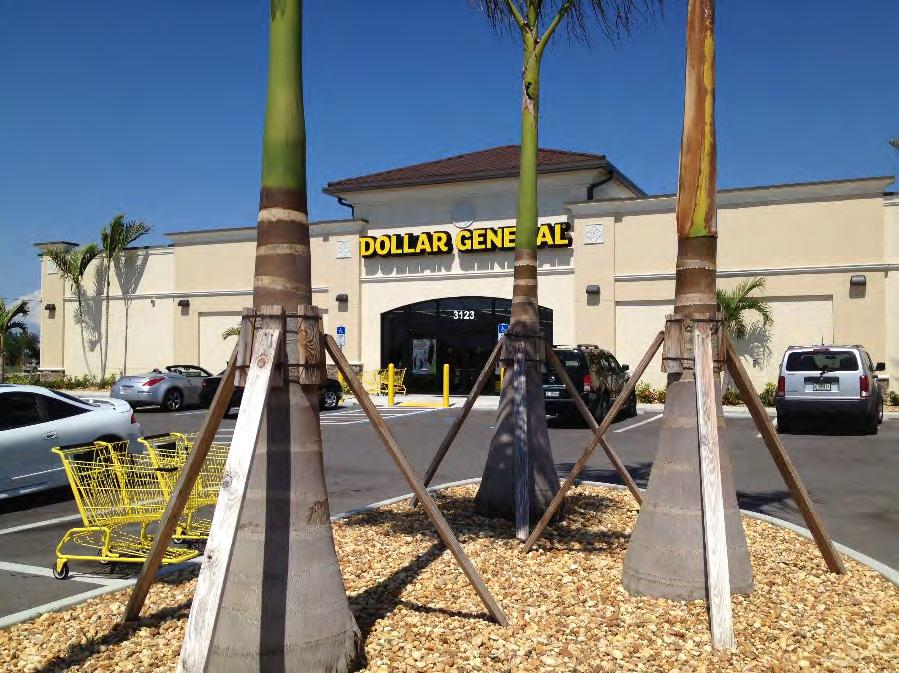 INVESTMENT OVERVIEW Dollar General Center 3123 Chiquita Blvd., Cape Coral, FL 33914 Price Cap Rate Rental Income Expenses NOI DG Lease Start $2,785,000 6.