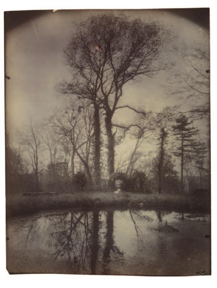 Eugène Atget (French, 1857 1927). The Park at Sceaux (April 1925, 7 a.m.), 1925, from Atget numbering series Sceaux #37; arrowroot print, goldtoned; 22.9 x 17.