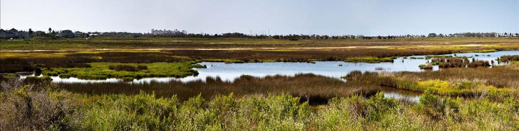 Galveston Bay Foundation Mission: To preserve, protect, and enhance the natural resources