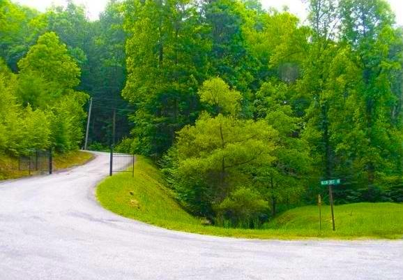 REMAINING 30 ACRES / 24 LOTS 00 FALCON CREST DRIVE, FAIRVIEW, NC PROPERTY HIGHLIGHTS Seller will consider selling individual lots in Phases One & Two Owner financing Possible.