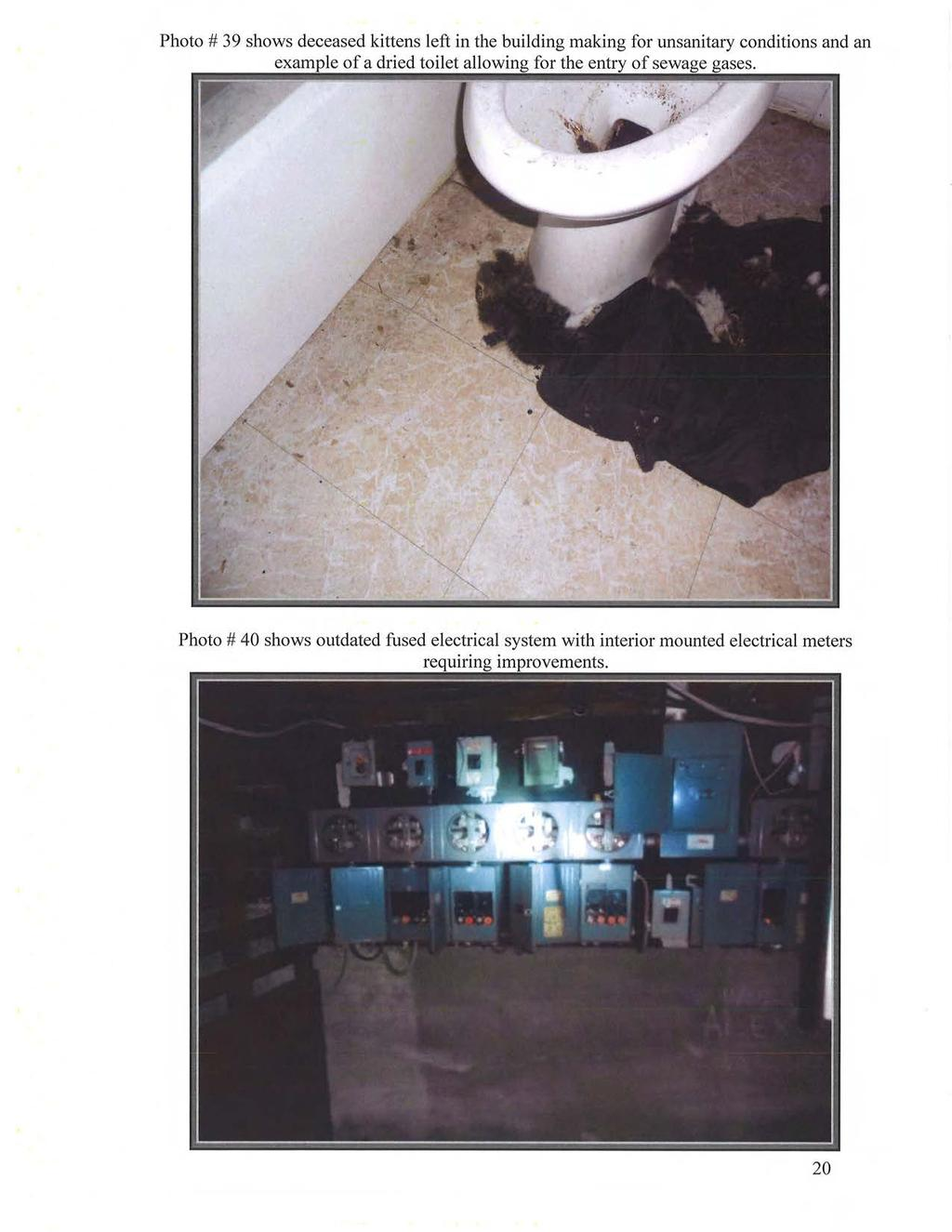Photo# 39 shows deceased kittens left in the building making for unsanitary conditions and an of a dried toilet for the