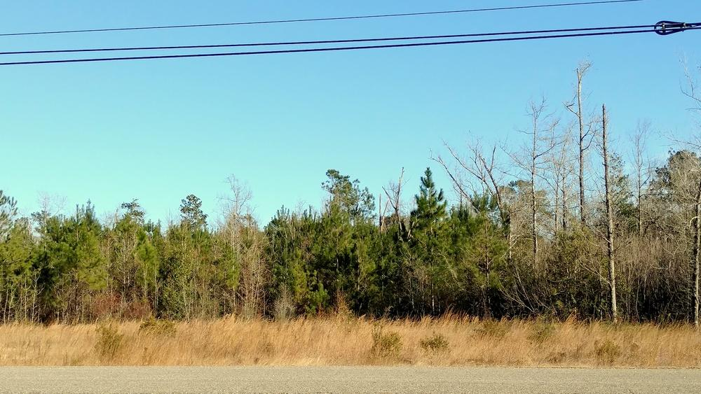 LAND FOR SALE COMMERCIAL LAND IN PEARL RIVER 66170 LA-41, Pearl River, LA 70452 KW COMMERCIAL 1522 W.