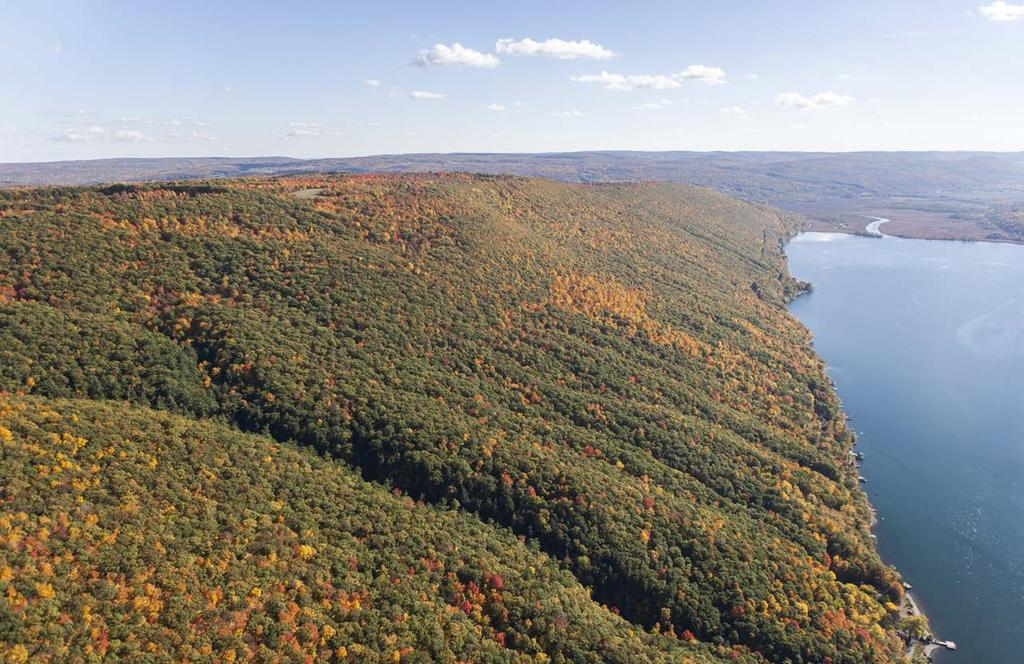 Finger Lakes Land Trust To conserve forever the lands and waters of the Finger Lakes region, ensuring scenic vistas, clean water, local foods,