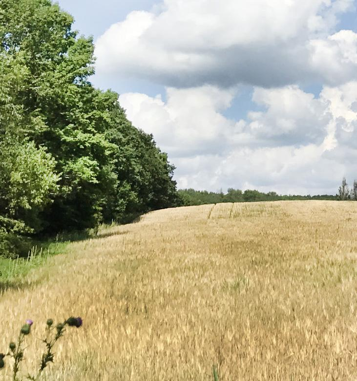 Acquisition of a 158-acre property adjacent to the Land Trust s Charles Spencer Nature Preserve will add a link to the Emerald Necklace, while enhancing access to the preserve.
