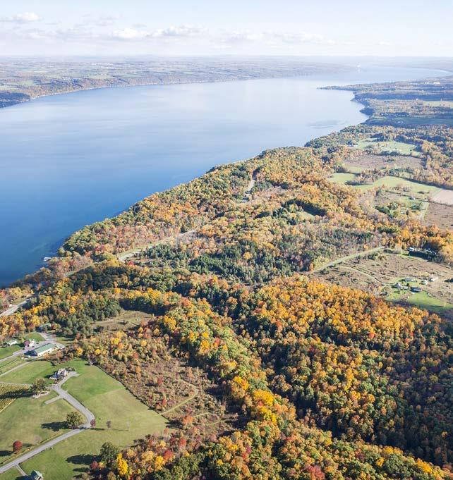 The Land Trust added 15 forested acres with 1,600 feet of frontage on a Cayuga Lake tributary to its VanRiper Conservation Area and adjacent Whitlock Nature Preserve on the western shore of Cayuga