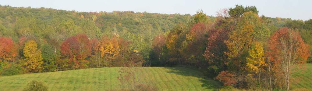 Woldt (Onondaga County) The Land Trust protected 29 acres on the eastern hillside overlooking Skaneateles Lake.
