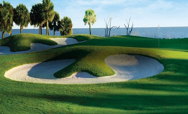 In addition to all of the vacation features and benefits, our guests will enjoy special Palmetto Dunes Resort